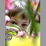 Young girl peering through flowers